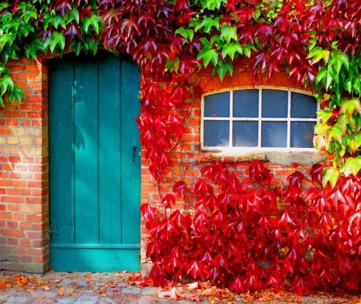 autumn-962755_960_720