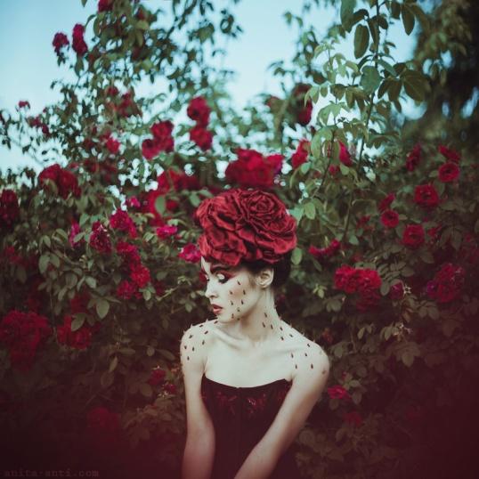 roses_n_thorns_by_anitaanti-d6kq427