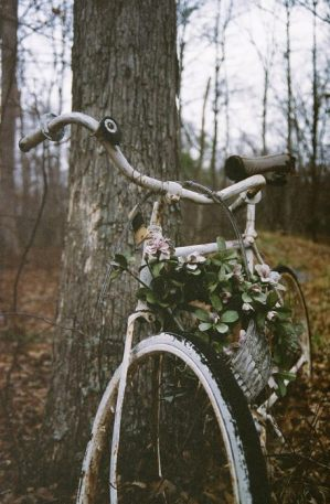 bicycle-crown-of-flowers-flowers-forest-favim-com-1757534